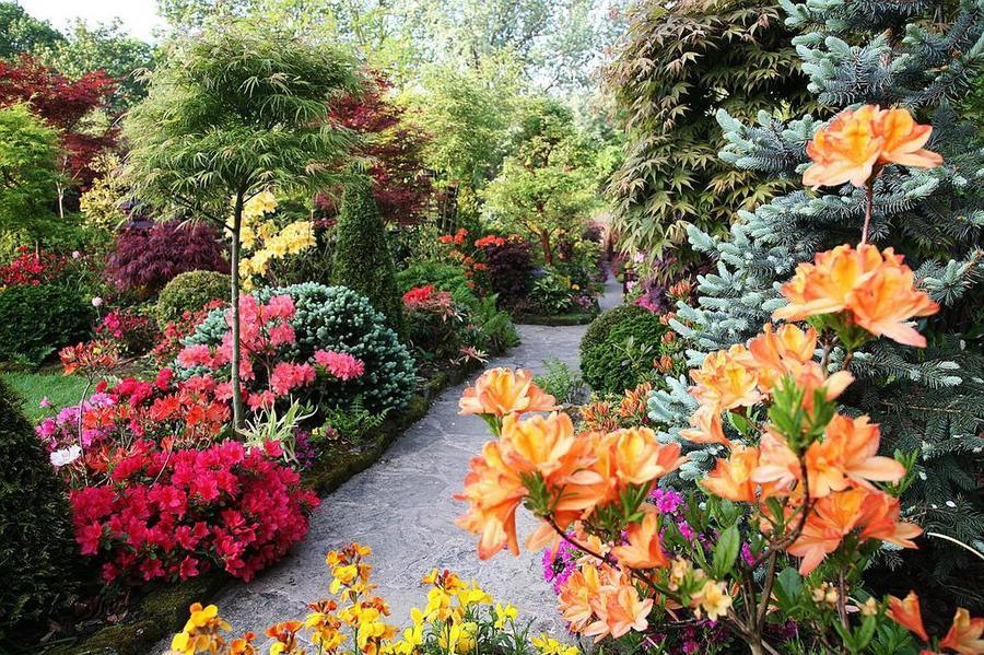 English Garden And Its Features